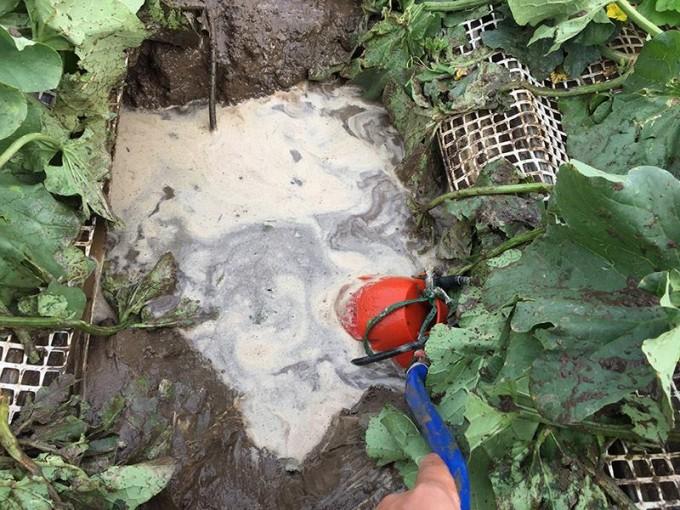 メロンハウス ポンプ排水