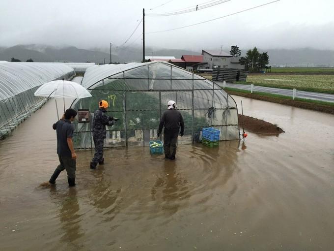 8月23日台風 ハウス水没