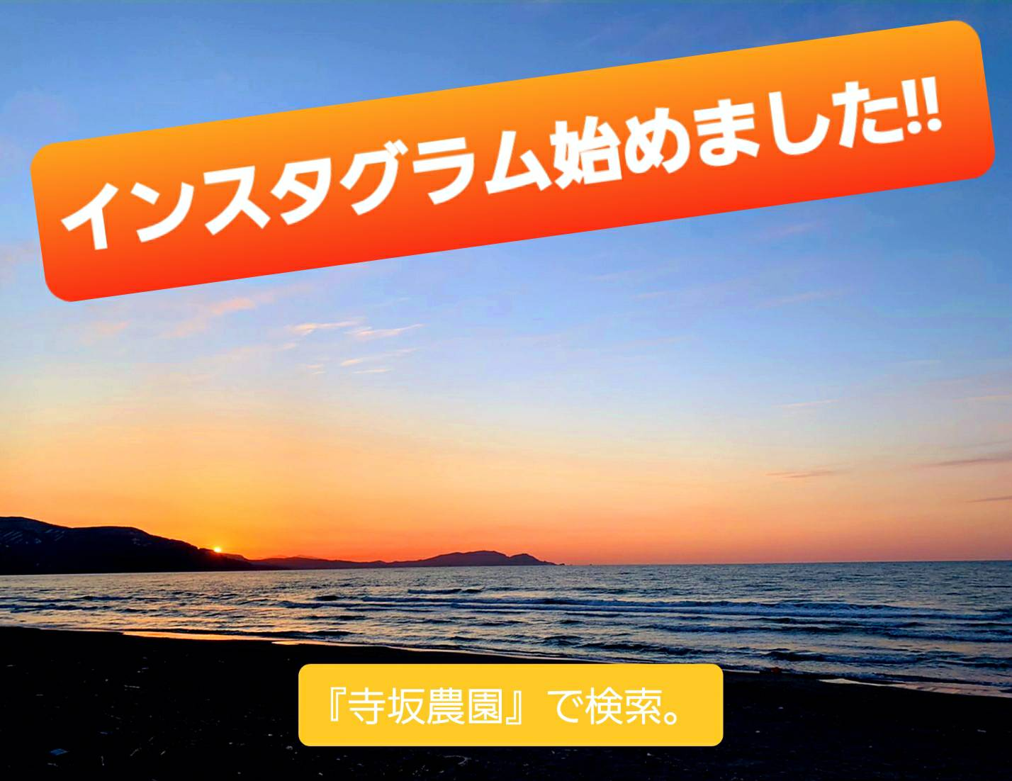 line_oa_chat_200427_165701