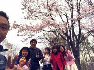 桜とベトナム実習生