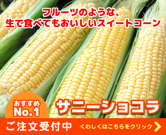 トウモロコシ、サニーショコラの販売ページ