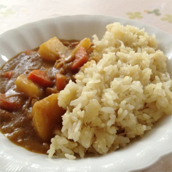 タマネギご飯のカレー