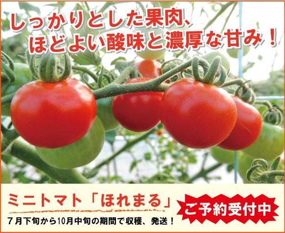 ミニトマトほれまるの購入ページ