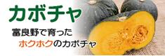 富良野かぼちゃの商品バナー