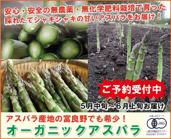 北海道・富良野の農家直送!オーガニックアスパラガス