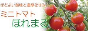 ミニトマトほれまるのバナー
