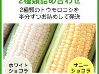 ト黄色いトウモロコシ「サニーショコラ」白いトウモロコシ「雪の妖精」2種類詰め合わせの販売ページ